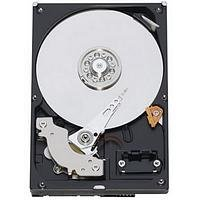 Western Digital WD10EADS Data Recovery | Tierra Data Recovery
