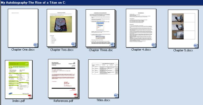 Tierra Data Recovery File Preview Example